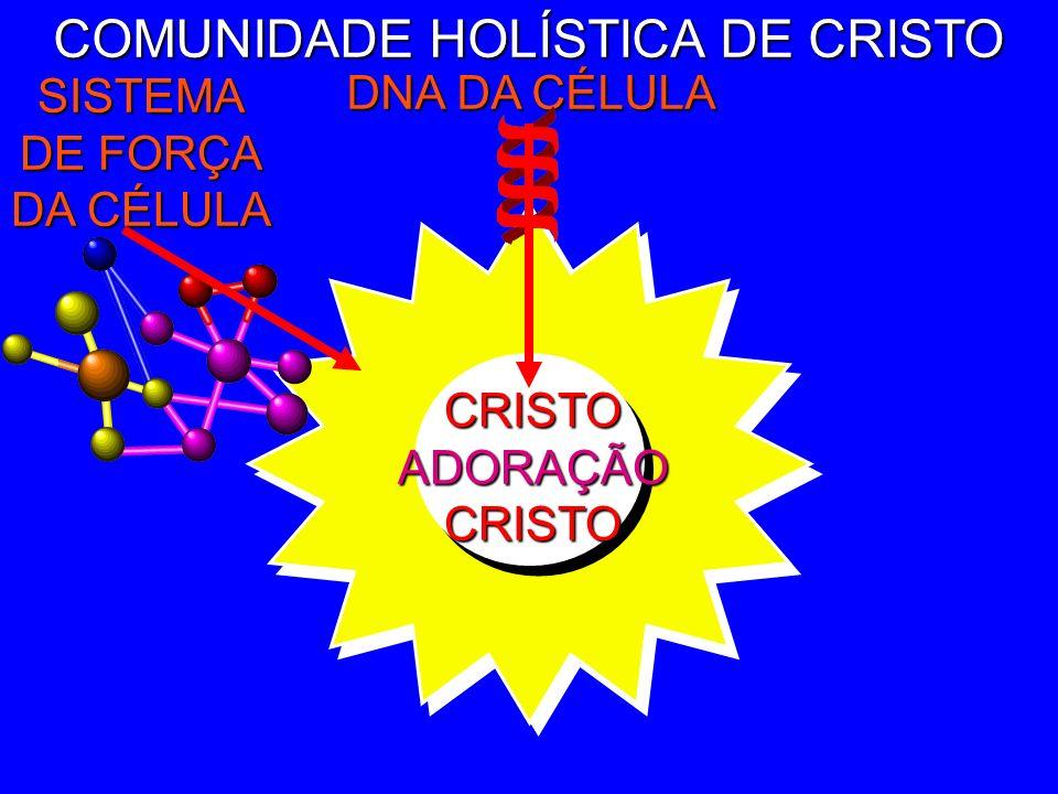 CRISTOADORAÇÃOCRISTO COMUNIDADE HOLÍSTICA DE CRISTO DNA DA CÉLULA Nós não construí- mos comunidade. Nós ENTRAMOS na comunidade por meio da cruz: A mor