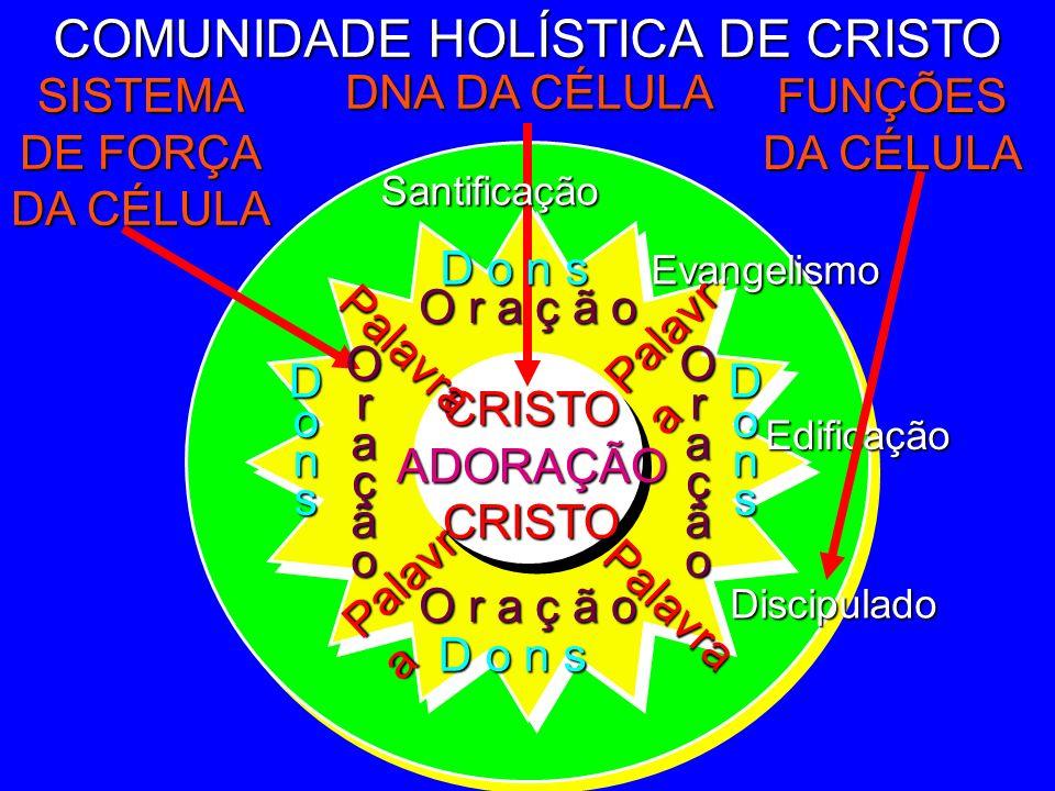 COMUNIDADE HOLÍSTICA DE CRISTO Edificação DNA DA CÉLULA FUNÇÕES DA CÉLULA SISTEMA DE FORÇA DA CÉLULA Evangelismo CRISTOADORAÇÃOCRISTO Santificação O r