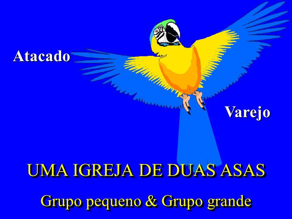 UMA IGREJA DE DUAS ASAS Grupo pequeno & Grupo grande Atacado Varejo