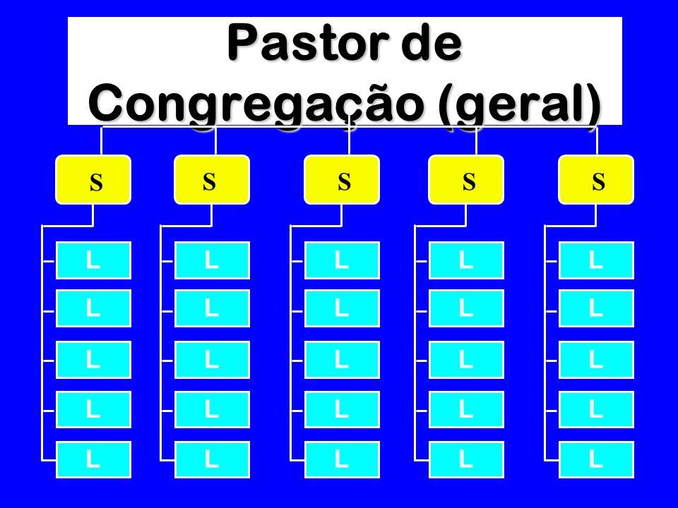 Pastor de Congregação (geral) L L L L S L L L L L L L L L L L L L L L L L L L L L SSSS