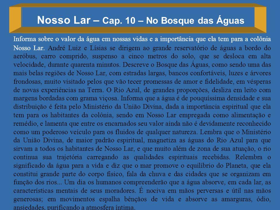 Nosso Lar – Cap. 10 – No Bosque das Águas Informa sobre o valor da água em nossas vidas e a importância que ela tem para a colônia Nosso Lar. André Lu