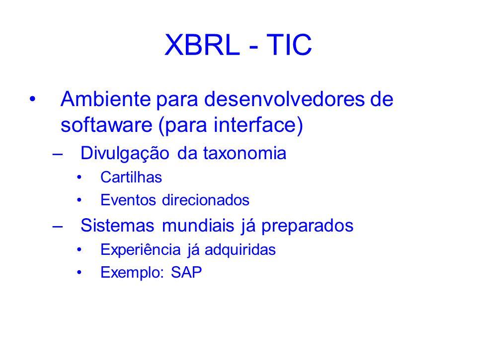 XBRL - TIC Ambiente para desenvolvedores de softaware (para interface) –Divulgação da taxonomia Cartilhas Eventos direcionados –Sistemas mundiais já p