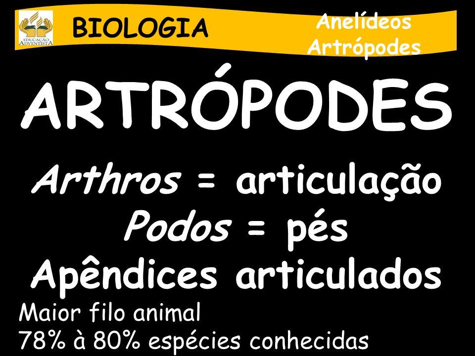 BIOLOGIA Anelídeos Artrópodes ARTRÓPODES Arthros = articulação Podos = pés Apêndices articulados Maior filo animal 78% à 80% espécies conhecidas