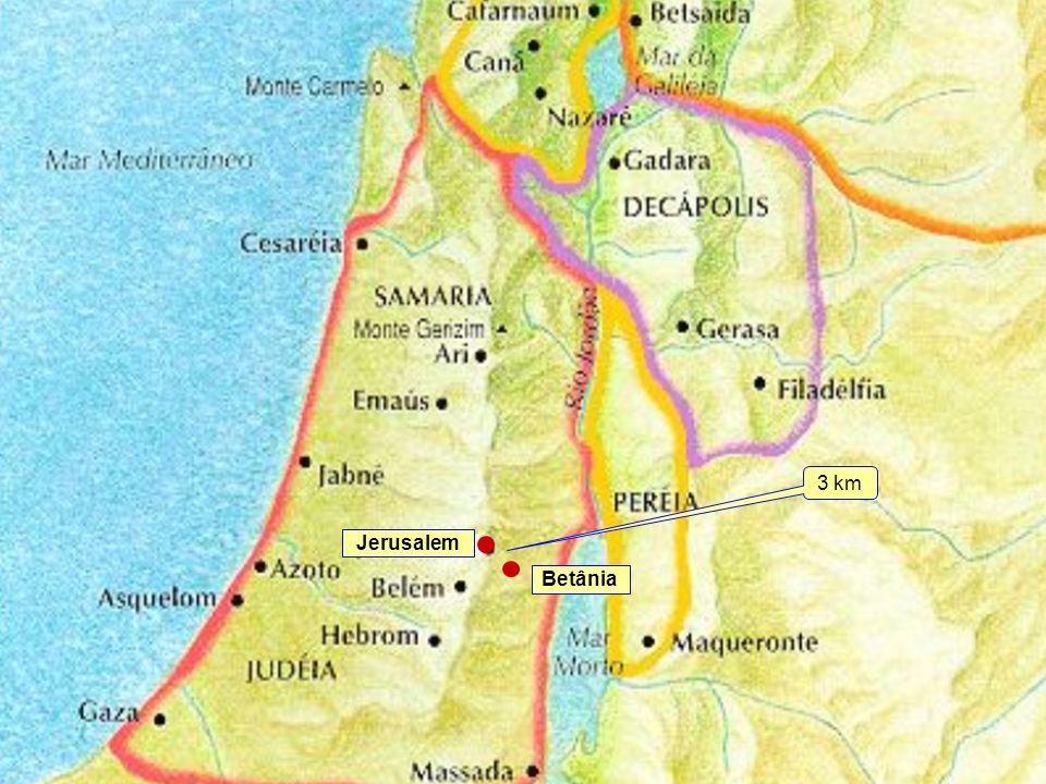 Classe Visão Bíblica IPJG - 2008 Betânia Jerusalem 3 km