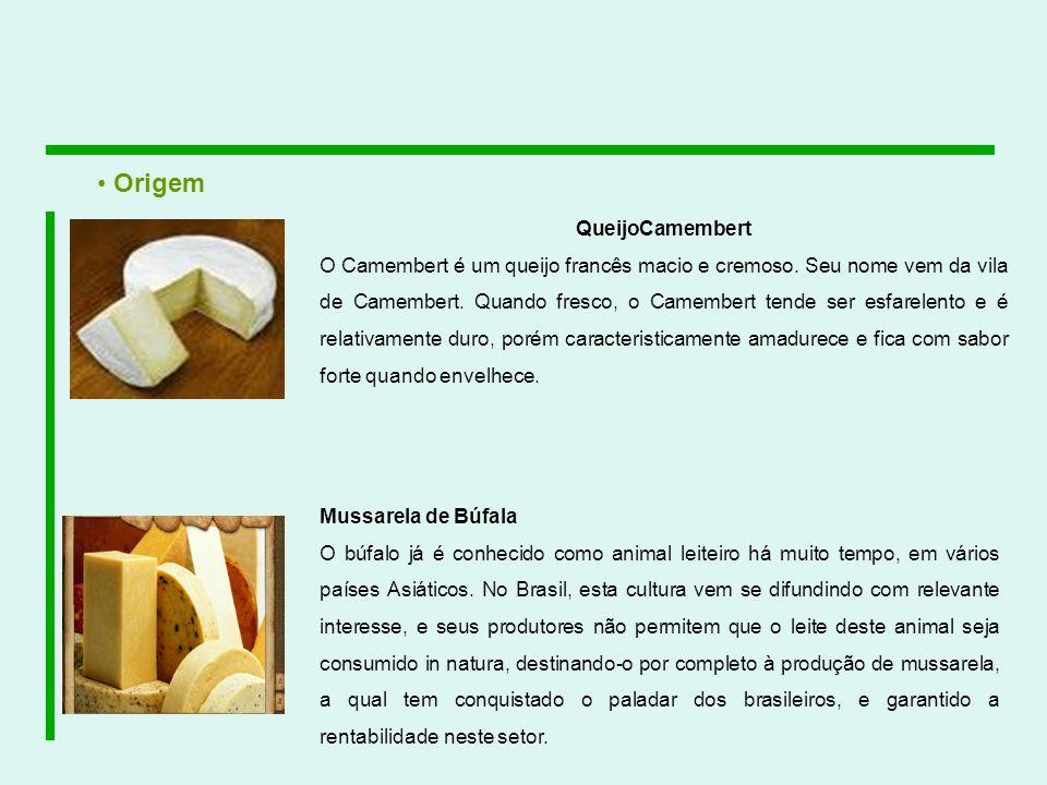 QueijoCamembert O Camembert é um queijo francês macio e cremoso. Seu nome vem da vila de Camembert. Quando fresco, o Camembert tende ser esfarelento e