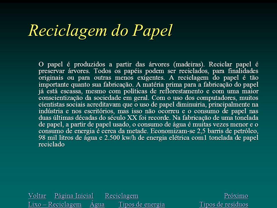 Reciclagem do Papel O papel é produzidos a partir das árvores (madeiras).