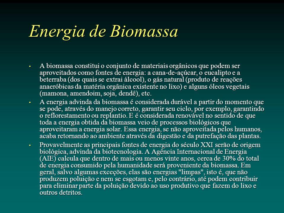 Energia de Biomassa A biomassa constitui o conjunto de materiais orgânicos que podem ser aproveitados como fontes de energia: a cana-de-açúcar, o eucalipto e a beterraba (dos quais se extrai álcool), o gás natural (produto de reações anaeróbicas da matéria orgânica existente no lixo) e alguns óleos vegetais (mamona, amendoim, soja, dendê), etc.
