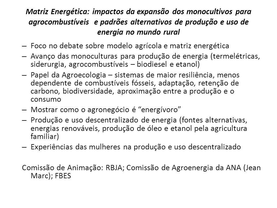 Matriz Energética: impactos da expansão dos monocultivos para agrocombustíveis e padrões alternativos de produção e uso de energia no mundo rural – Fo