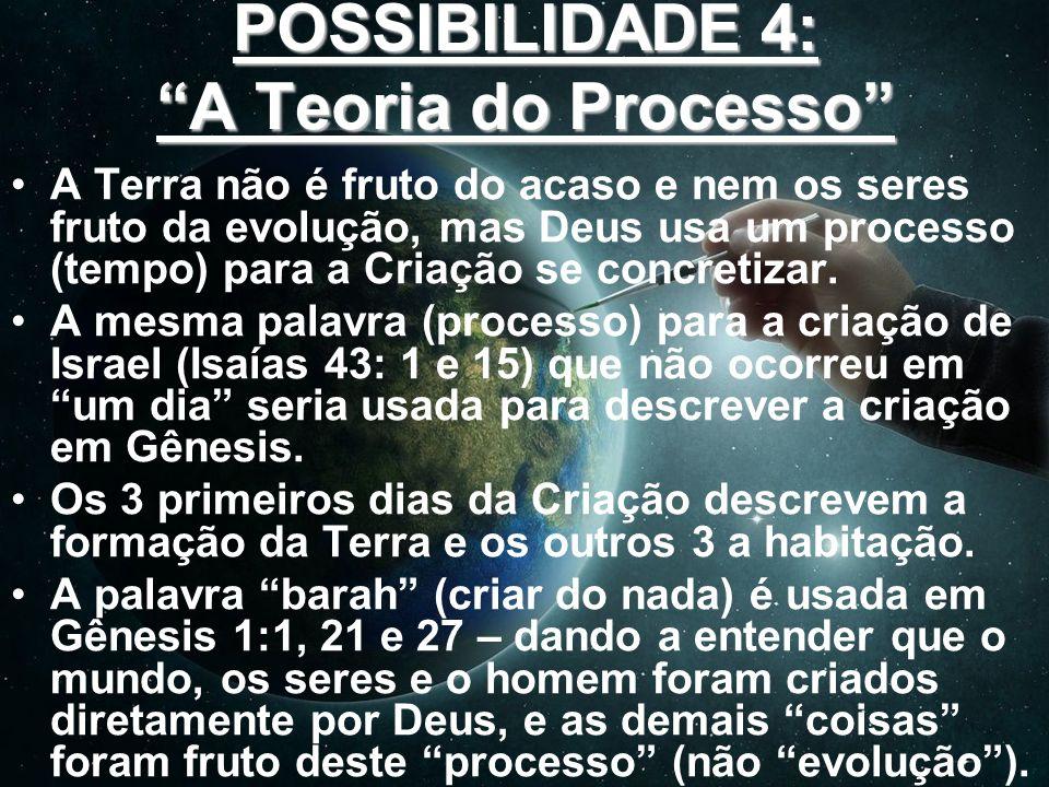 POSSIBILIDADE 4: A Teoria do Processo A Terra não é fruto do acaso e nem os seres fruto da evolução, mas Deus usa um processo (tempo) para a Criação s