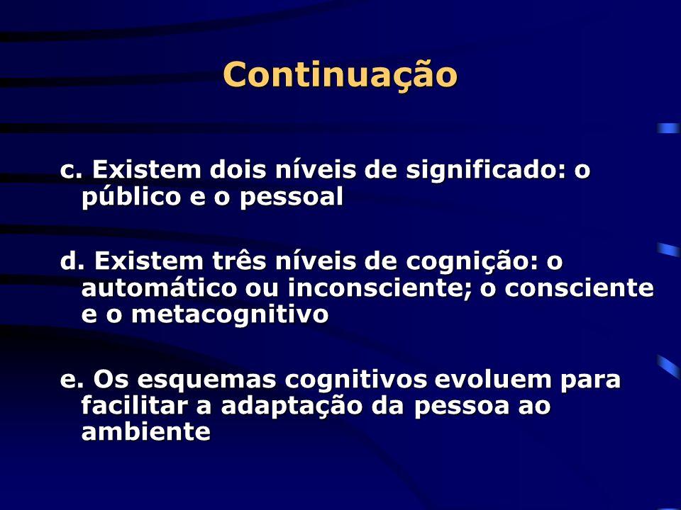 Continuação c. Existem dois níveis de significado: o público e o pessoal d. Existem três níveis de cognição: o automático ou inconsciente; o conscient