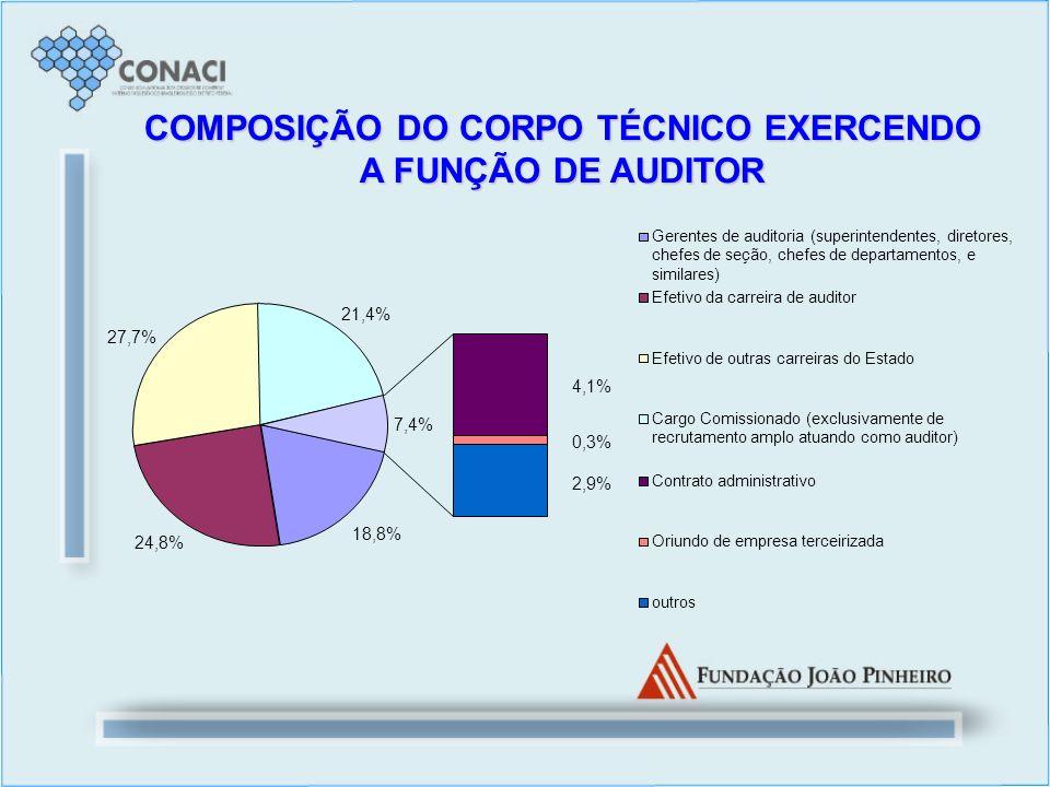 18,8% 24,8% 27,7% 21,4% 4,1% 0,3% 2,9% 7,4% Gerentes de auditoria (superintendentes, diretores, chefes de seção, chefes de departamentos, e similares)