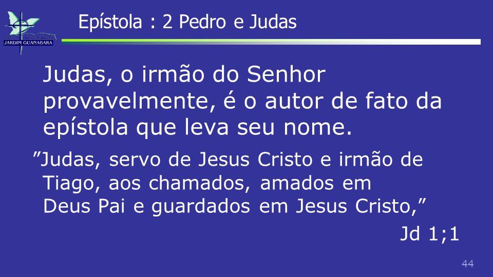 45 Epístola : 2 Pedro e Judas Se fosse para fazer uma pseudonomia, provavelmente não se teria escolhido um autor relativamente desconhecido, e teria identificado-se não como irmão de Tiago, mas como o próprio ou um outro apóstolo.