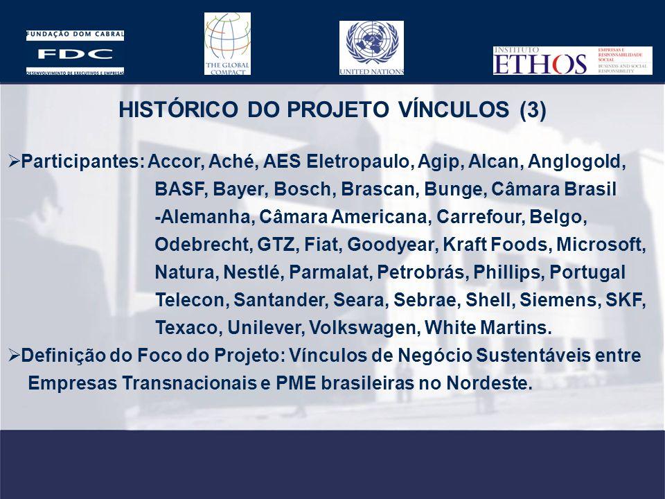 HISTÓRICO DO PROJETO VÍNCULOS (3) Participantes: Accor, Aché, AES Eletropaulo, Agip, Alcan, Anglogold, BASF, Bayer, Bosch, Brascan, Bunge, Câmara Bras