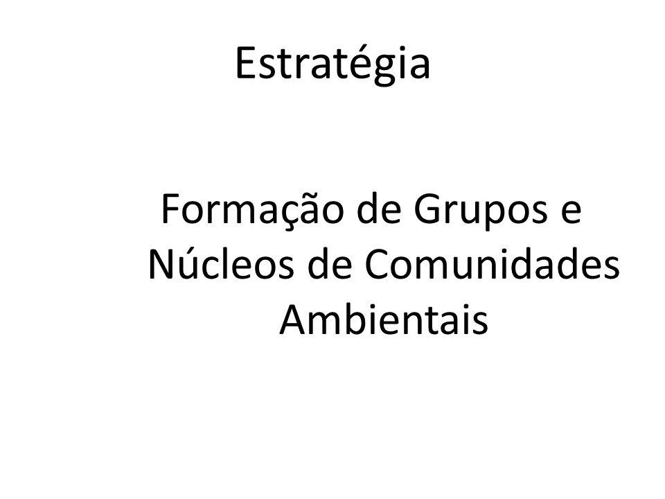 Estratégia Formação de Grupos e Núcleos de Comunidades Ambientais