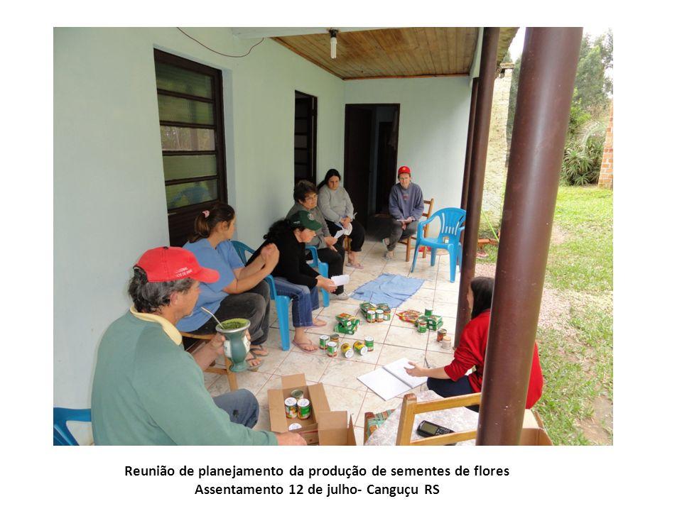 Reunião de planejamento da produção de sementes de flores Assentamento 12 de julho- Canguçu RS