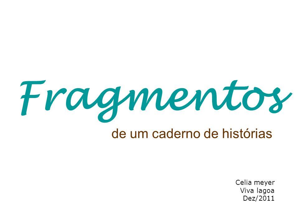 de um caderno de histórias Celia meyer Viva lagoa Dez/2011 Fragmentos