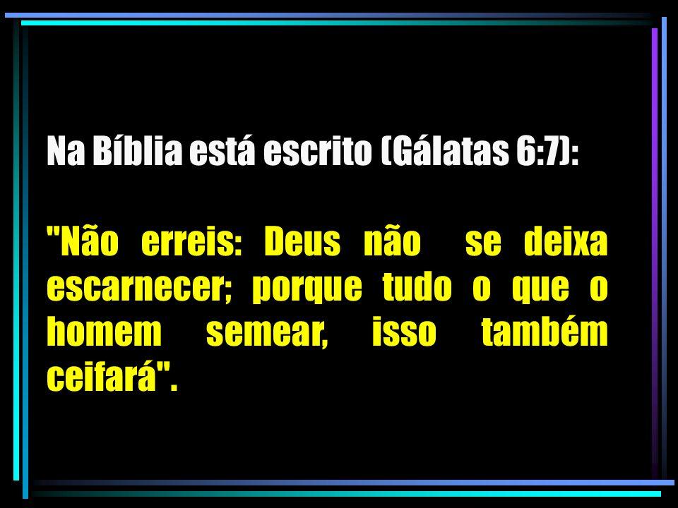 Na Bíblia está escrito (Gálatas 6:7):