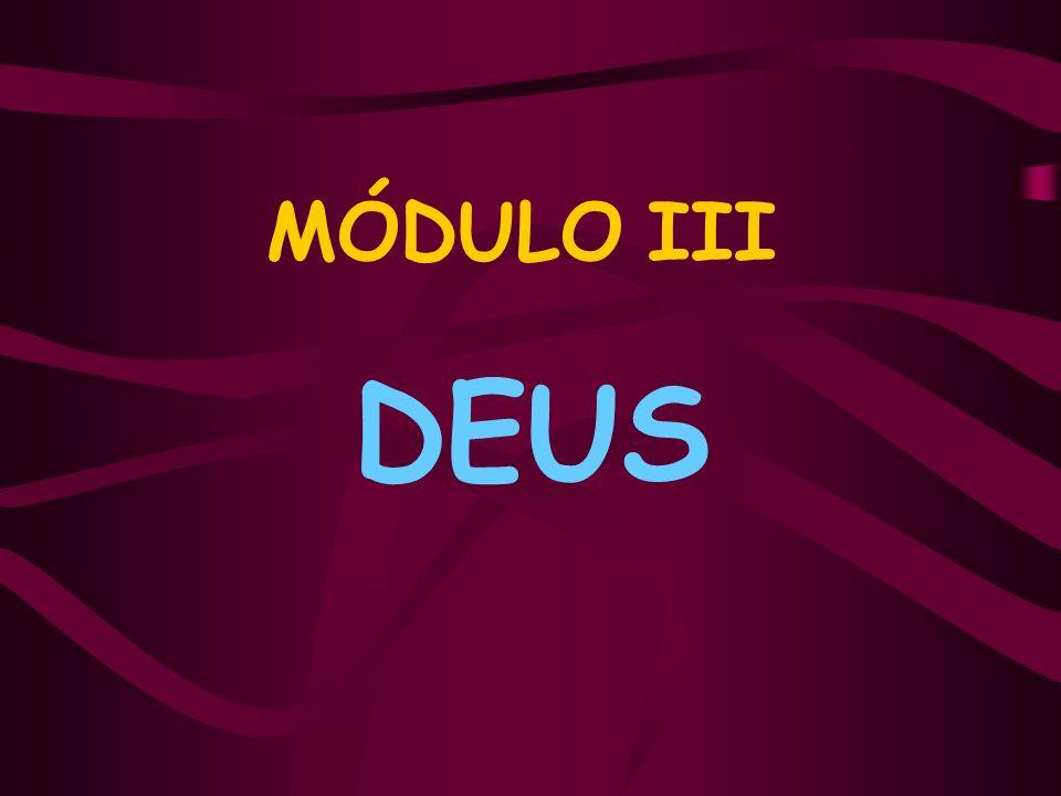 MÓDULO III Roteiro 1 – Existência de DEUS; Roteiro 2 – Provas da existência de Deus; Roteiro 3 – Atributos da divindade; Roteiro 4 – A providência divina.