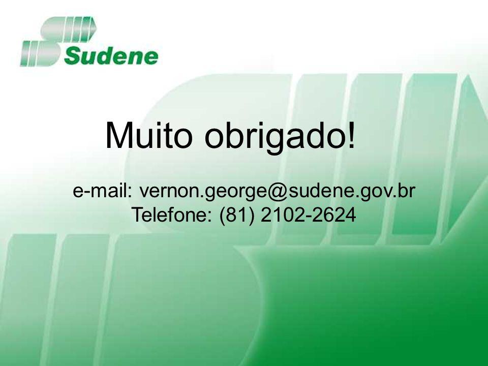 e-mail: vernon.george@sudene.gov.br Telefone: (81) 2102-2624 Muito obrigado!