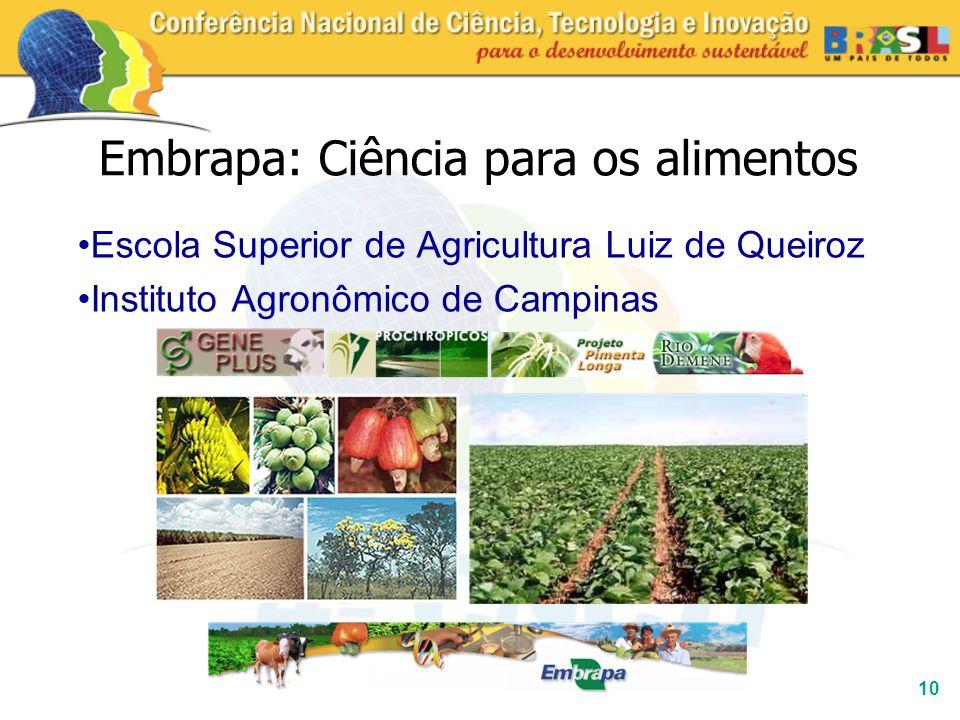 10 Embrapa: Ciência para os alimentos Escola Superior de Agricultura Luiz de Queiroz Instituto Agronômico de Campinas
