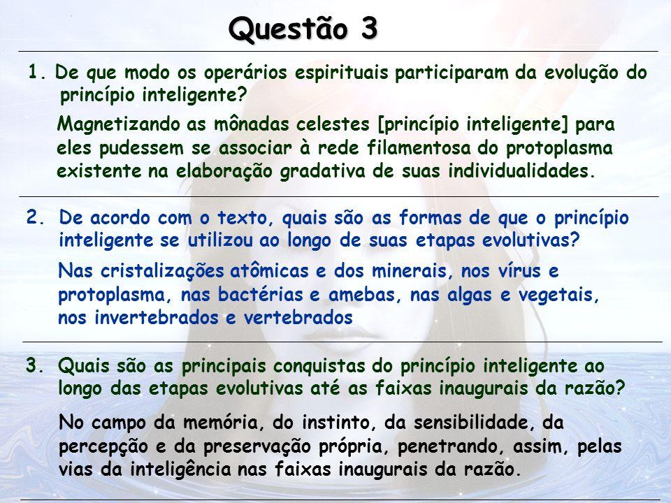 1. De que modo os operários espirituais participaram da evolução do princípio inteligente? Questão 3 Magnetizando as mônadas celestes [princípio intel
