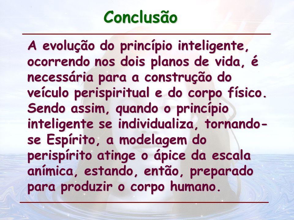Conclusão A evolução do princípio inteligente, ocorrendo nos dois planos de vida, é necessária para a construção do veículo perispiritual e do corpo f