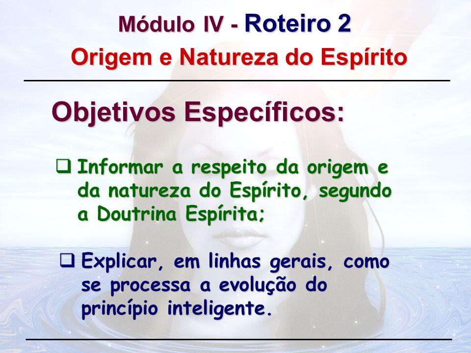 Informar a respeito da origem e da natureza do Espírito, segundo a Doutrina Espírita; Informar a respeito da origem e da natureza do Espírito, segundo
