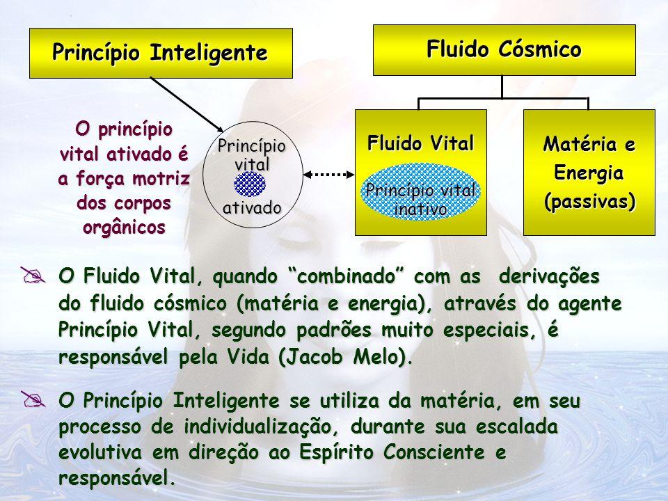 O Fluido Vital, quando combinado com as derivações do fluido cósmico (matéria e energia), através do agente Princípio Vital, segundo padrões muito esp