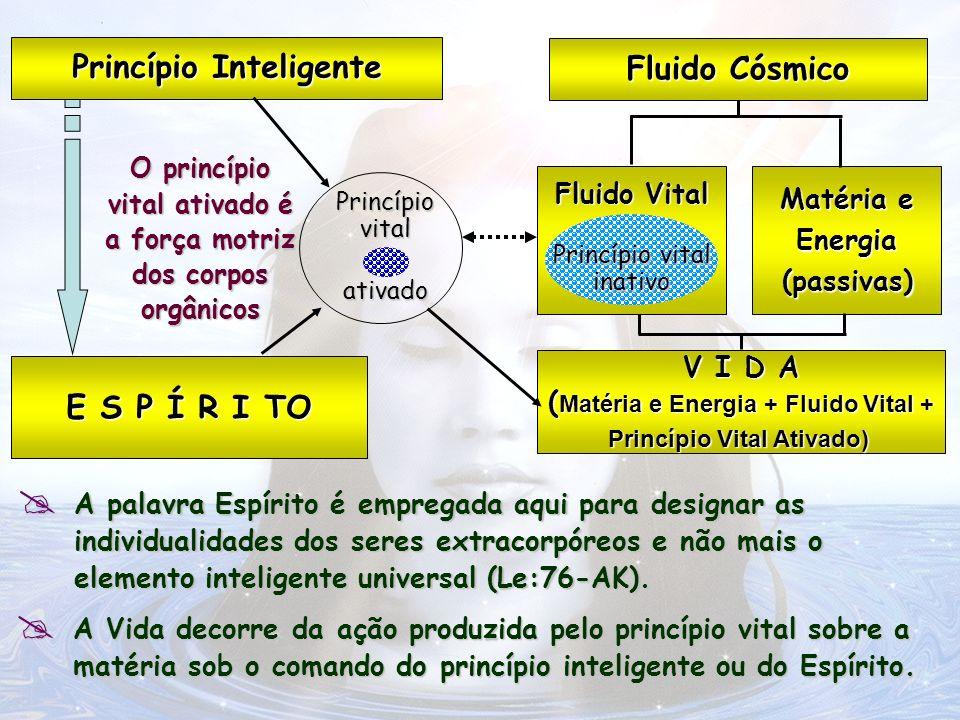 D E U S - Criação D E U S - Criação Princípio Espiritual (PE) Princípio Material (PM) E S P Í R I TO Fluido Cósmico (FC) Fluido Vital (FV) Fluido Vital (FV) + Princípio Vital Inativo (PVi) Princípio Vital Ativado (PVa) Matéria e Energia (ME) (passivas) (passivas) V I D A ( ME+FV+PVa) Princípio Inteligente Inteligente(PI)