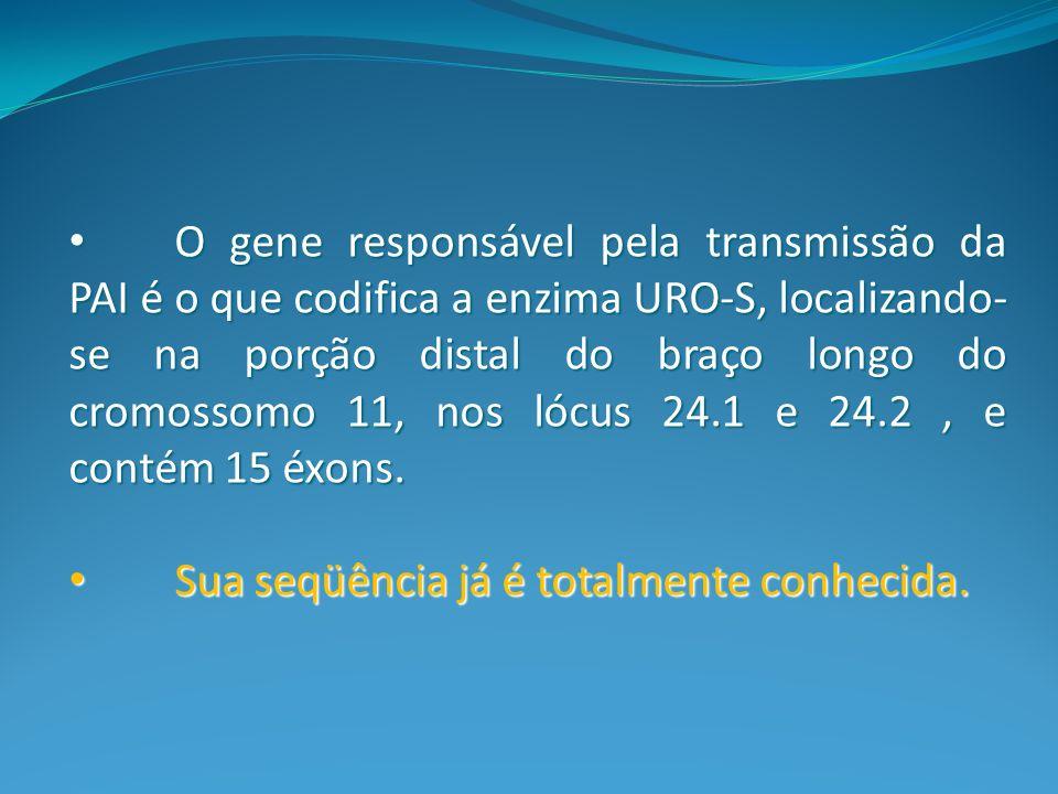 O gene responsável pela transmissão da PAI é o que codifica a enzima URO-S, localizando- se na porção distal do braço longo do cromossomo 11, nos lócu