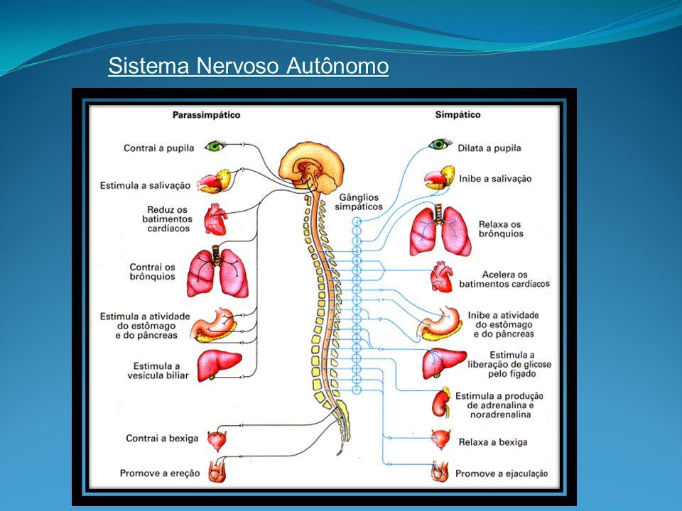 Não há correlação entre a severidade dos sintomas e o tipo de mutação.
