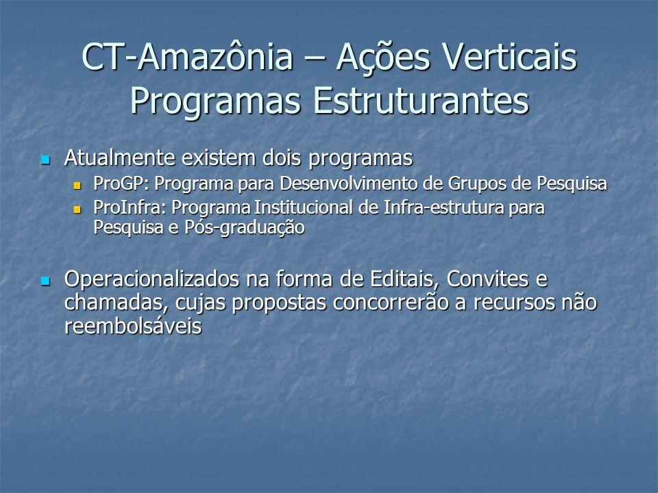 CT-Amazônia – Ações Verticais Programas Estruturantes Atualmente existem dois programas Atualmente existem dois programas ProGP: Programa para Desenvo