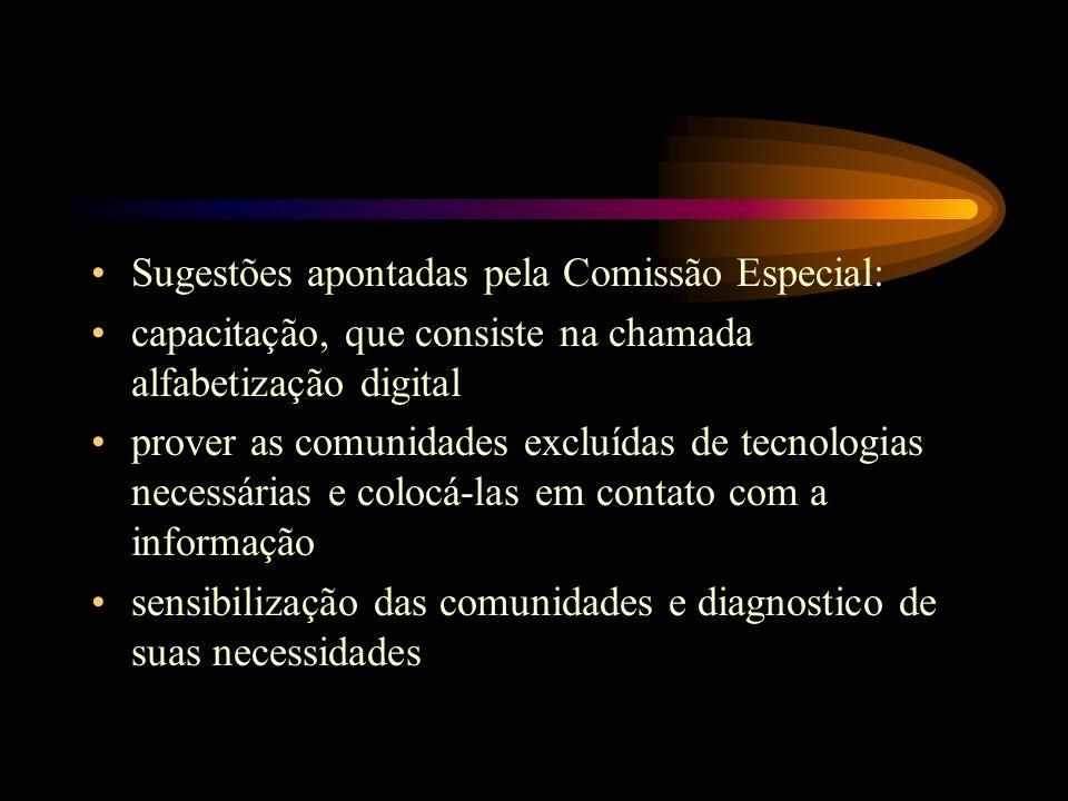 Sugestões apontadas pela Comissão Especial: capacitação, que consiste na chamada alfabetização digital prover as comunidades excluídas de tecnologias