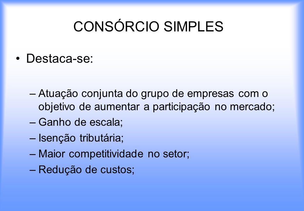 CONSÓRCIO SIMPLES Destaca-se: –Atuação conjunta do grupo de empresas com o objetivo de aumentar a participação no mercado; –Ganho de escala; –Isenção