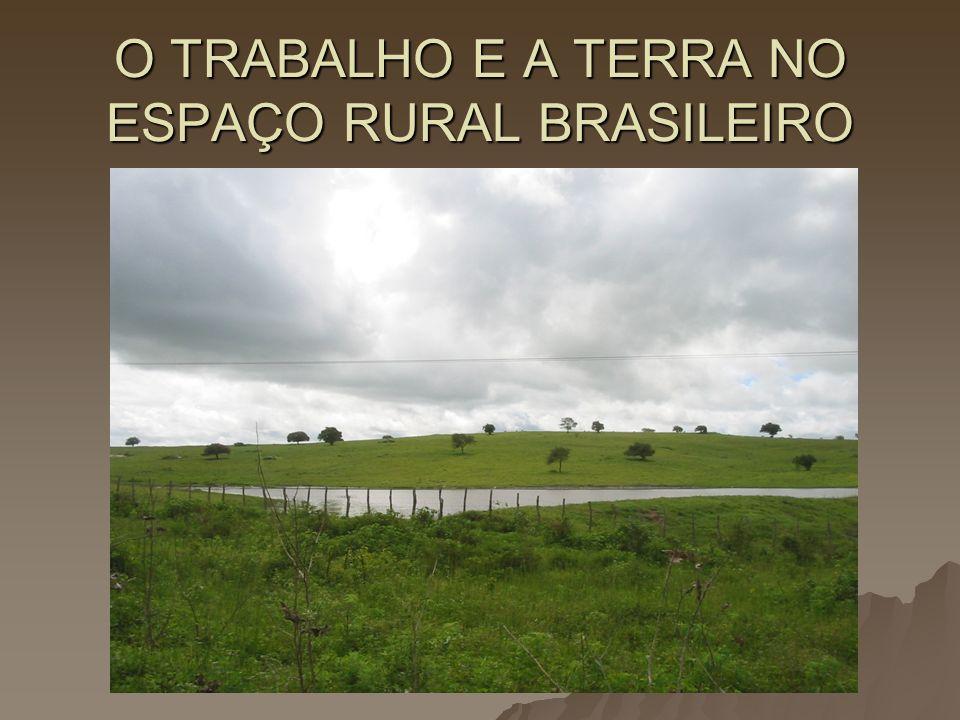 O TRABALHO E A TERRA NO ESPAÇO RURAL BRASILEIRO