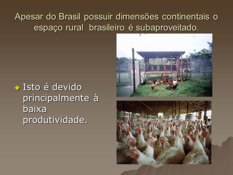 Apesar do Brasil possuir dimensões continentais o espaço rural brasileiro é subaproveitado. Isto é devido principalmente à baixa produtividade. Isto é