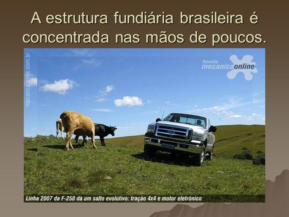 A estrutura fundiária brasileira é concentrada nas mãos de poucos.