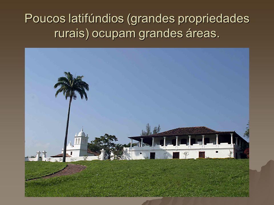 Poucos latifúndios (grandes propriedades rurais) ocupam grandes áreas.