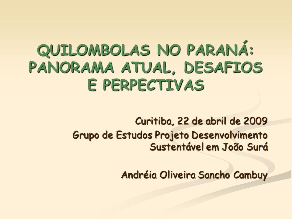 QUILOMBOLAS NO PARANÁ: PANORAMA ATUAL, DESAFIOS E PERPECTIVAS Curitiba, 22 de abril de 2009 Grupo de Estudos Projeto Desenvolvimento Sustentável em Jo