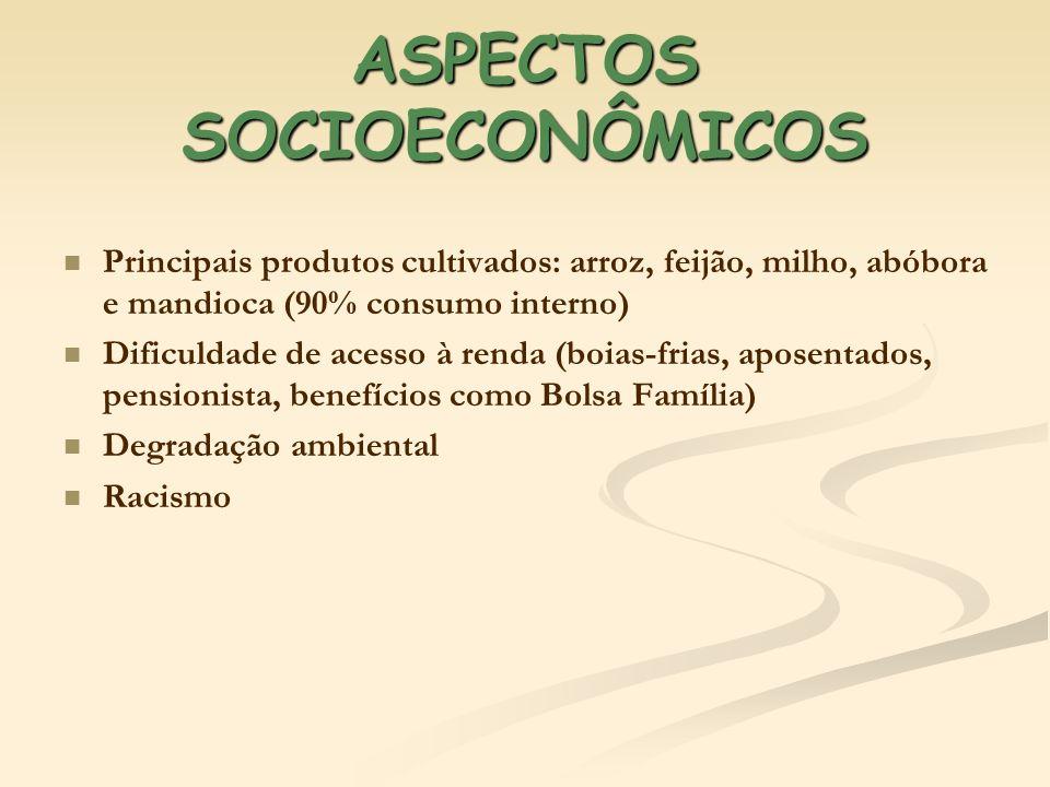 ASPECTOS SOCIOECONÔMICOS Principais produtos cultivados: arroz, feijão, milho, abóbora e mandioca (90% consumo interno) Dificuldade de acesso à renda