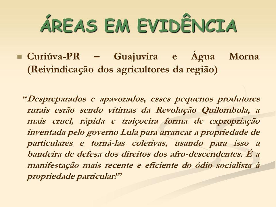 ÁREAS EM EVIDÊNCIA Curiúva-PR – Guajuvira e Água Morna (Reivindicação dos agricultores da região) Despreparados e apavorados, esses pequenos produtore