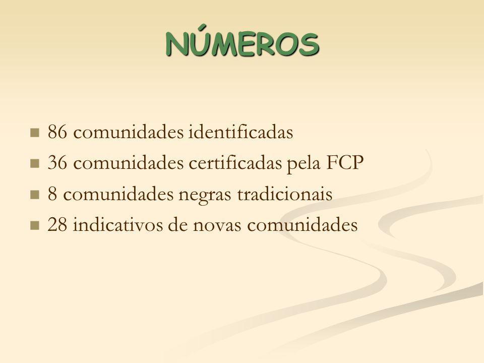 CERTIFICAÇÕES DA FCP ANONº COMUNIDADES 20041 20056 200623 20074 20082 -1ª 2004 - INVERNADA PAIOL DE TELHA -JOÃO SURÁ – 19/08/2005 Fonte: http://www.palmares.gov.br/