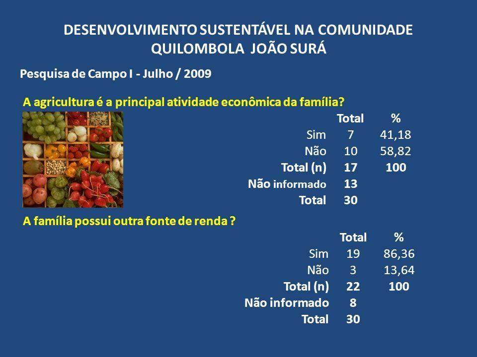DESENVOLVIMENTO SUSTENTÁVEL NA COMUNIDADE QUILOMBOLA JOÃO SURÁ Pesquisa de Campo I - Julho / 2009 A agricultura é a principal atividade econômica da f