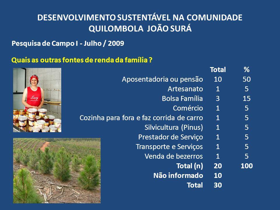 DESENVOLVIMENTO SUSTENTÁVEL NA COMUNIDADE QUILOMBOLA JOÃO SURÁ Pesquisa de Campo I - Julho / 2009 Quais as outras fontes de renda da família ? Total%