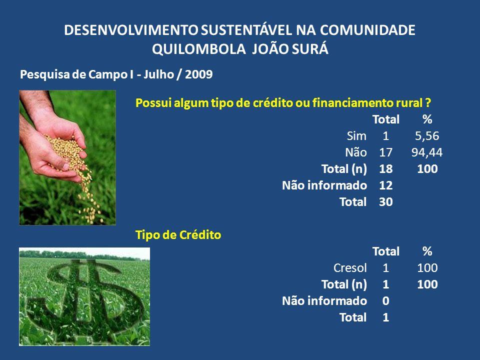 DESENVOLVIMENTO SUSTENTÁVEL NA COMUNIDADE QUILOMBOLA JOÃO SURÁ Pesquisa de Campo I - Julho / 2009 Possui algum tipo de crédito ou financiamento rural