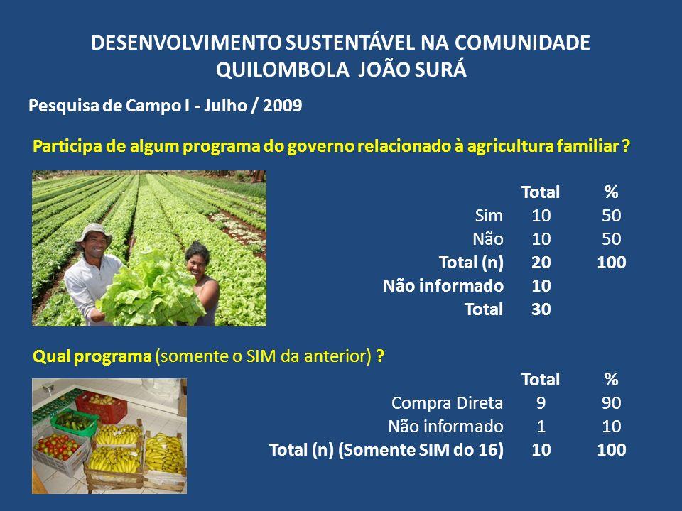 DESENVOLVIMENTO SUSTENTÁVEL NA COMUNIDADE QUILOMBOLA JOÃO SURÁ Pesquisa de Campo I - Julho / 2009 Participa de algum programa do governo relacionado à