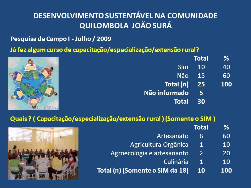 DESENVOLVIMENTO SUSTENTÁVEL NA COMUNIDADE QUILOMBOLA JOÃO SURÁ Pesquisa de Campo I - Julho / 2009 Já fez algum curso de capacitação/especialização/ext