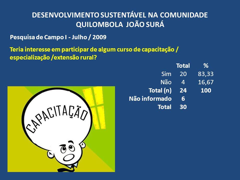 DESENVOLVIMENTO SUSTENTÁVEL NA COMUNIDADE QUILOMBOLA JOÃO SURÁ Pesquisa de Campo I - Julho / 2009 Teria interesse em participar de algum curso de capa