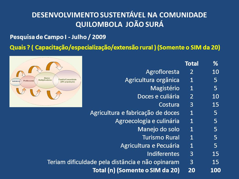 DESENVOLVIMENTO SUSTENTÁVEL NA COMUNIDADE QUILOMBOLA JOÃO SURÁ Pesquisa de Campo I - Julho / 2009 Quais ? ( Capacitação/especialização/extensão rural