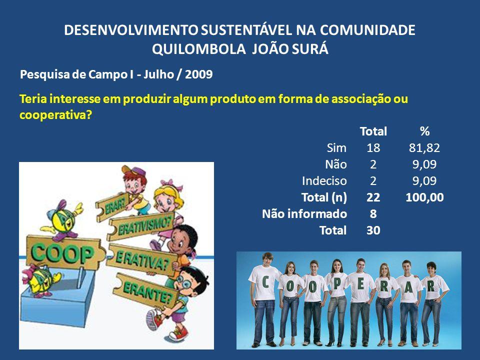 DESENVOLVIMENTO SUSTENTÁVEL NA COMUNIDADE QUILOMBOLA JOÃO SURÁ Pesquisa de Campo I - Julho / 2009 Teria interesse em produzir algum produto em forma d